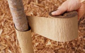 защита ствола дерева