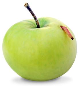 яблонная плодожерка-вредитель сада