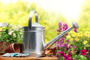 лейка садовая